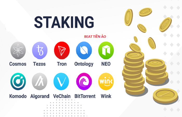 cac du an staking coin tot nhat